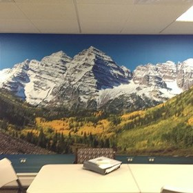 - Image360-Littleton-WallGraphics-Entertainment